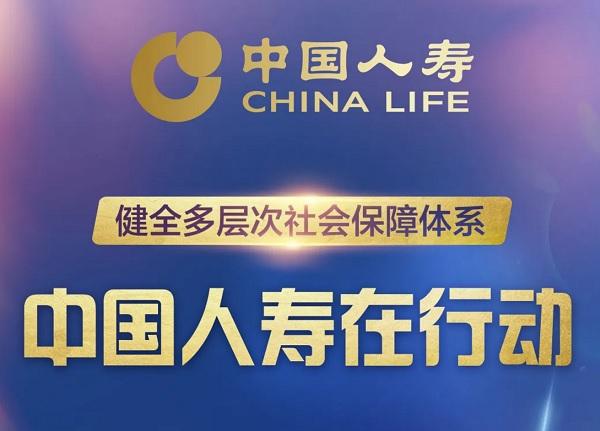 一图读懂丨健全多层次社会保障体系 中国人寿在行动